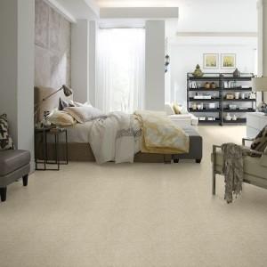 Carpet Beaverton